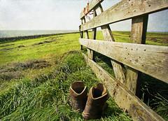 time for a break (kelsk) Tags: zuiderzeepad law8 langeafstandwandelpad longdistancetrail kelskphotography ijsselmeer hek gate betweenlemmerandtacozijl friesland nederland netherlands holland weiland meadow loopschoenen uitrusten shoes