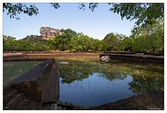 Rock (Raul Kraier) Tags: pool tree water wood grass rock sky sigiriya landscape viea reflection