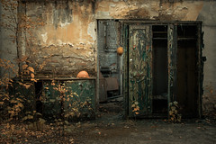 Wardrobe (Tomasz Aulich) Tags: abandoned decay urbex exploration explorer rustic rust plant tree helmet autumn travel oldschool brick wall armchair green colour europe poland bytomcity oldtrainstation nikon sigmalens building architecture indoor