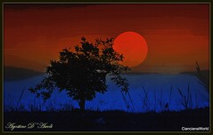 Poster con albero - Settembre-2018 (Agostino D'Ascoli) Tags: albero poster nikon nikkor sole cielo paesaggio landscape sunset tramonto art digitalart creative colore fullcolor texture nature photoshop