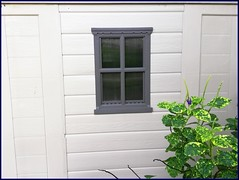 garden shed (j0035001-2) Tags: garden building storeroom park window plant simple shed white