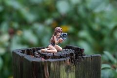 Canon EOS-10D (2003) (maoby) Tags: pourpre ichigomorino ichigo morino canon eos10d 2003 figurine collection test vintage old cameras