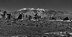 A Panoramic View to the Windows Section, Elephant Butte and the La Sal Mountains...What a View! (Black & White, Arches National Park) (thor_mark ) Tags: archesnationalpark azimuth135 balancedrocktrail blackwhite blueskies butte canyonlands capturenx2edited centralcanyonlands colorefexpro coloradoplateau day6 desert desertgrassland desertlandscape desertmountainlandscape desertplantlife doublearch elephantbutte highdesert intermountainwest lasalmountains landscape largebushes layersofrock lookingse mountainpeaks mountains mountainsindistance mountainsoffindistance nature nikond800e outside portfolio prairieland project365 rockformations snowonfaroffmountainpeaks snowcapped sunny trees turretarch utahhighdesert utahnationalparks2017 walkingaroundbalancedrock windowssection ut unitedstates