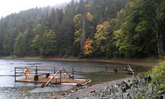 До осені на дощик з коньяком (akremniova) Tags: autumn carpathians ukraine synevir waterfall shypit