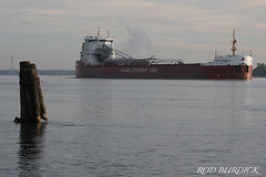 bcomeau92718s_rb (rburdick27) Tags: stclairriver baiecomeau csl canadasteamshiplines scenicmichigan greatlakes