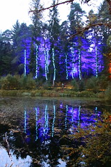 2018 - 4.10.18 Enchanted Forest (17) (marie137) Tags: forest lights trees show marie137 bright colourful pitlochry treeman attraction visit entertainment music outdoors sculptures wicker food drink family people water animation