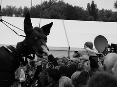 BW DOG XOLO SAYS HELLO (garydavidworthington) Tags: liverpoolsdream giants liverpool photography banjosandwitch blackandwhite people boy dog xolo dream radio trees crowd princespark uk creative city costume chair crane umberella cool art artistic puppet animal mechanical steam marionette royaldeluxe french france jeanluccourcoult littleboy black white giantspectacular