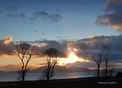 Golf Course Sunset (g crawford) Tags: crawford westkilbride seamill portencross ayrshire northayrshire water clyde riverclyde firthofclyde sunset sundown gloaming orange sky tree trees copse wood stand arran ardneil bay ardneilbay portencrossroad golfcourse westkilbridegolfcourse