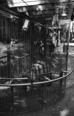 (David Chee) Tags: leica m6 35mm summicron summicronm iv v4 f2 kodak trix 800 hc110 oregon or portland downtown sw 6th ave bus stop street rangefinder film analog blackandwhite bw