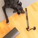 Schwarzer Labrador - Pulsgurt, Yogamatte und Blackroll - Fitness
