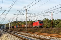 X4EC-049 (Łukasz Draheim) Tags: polska poland pociąg pkp cargo landscapes landscape scenery scenerie railway railroad rail train transport locomotive logistic bahn bydgoszcz nikon kolej d5200