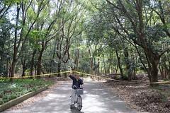 Yellow tape (AntEater Theater) Tags: tape yellow hazard keepout donotcross typhoons bikes parks osakacastlepark osaka japan streetphotography