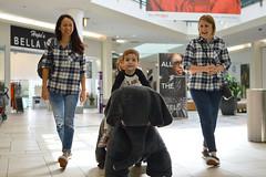 Let's Roll (radargeek) Tags: mall oklahomacity quailspringsmall kid child elephant parent family riding 2018 october oklahoma