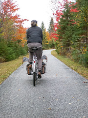 Drying out / Taking flight (Shu-Sin) Tags: bicycle ride cycling velo fall autumn colors leaves rain clouds randonneur randonneuse touring shusin ptit train du nord petit canada quebec path rail trail gilles berthoud panniers dry wet pg october 2018