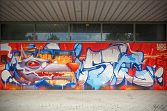 Graff by Difuz & Wise ! (Steph Land) Tags: difuz wise jpps graff graffs graffiti spray sprayart artiste art artderue street streetart zeiss zeisslens carlzeisslenses carlzeiss peinture peintre caps aerosol