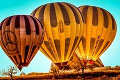 Bobbleheads (sunandoroyphotography) Tags: nikon nikond7200 nikonphotography nikonartist nikonphotographer lonelyplanet natgeo natgeoyourshot sunrise balloon balloonride hotairballoon turkey cappadocia kappadokia