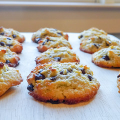 2018.10.21 Low Carbohydrate Chocolate Chip Cookies, Washington, DC USA 06724