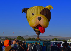 Dogma (oybay©) Tags: albuquerqueballoonfestival albuquerque newmexico balloon balloonfestival festival somethingelse color colors colorful vibrant hotairballoons sky blue best bestshot beach people park field grass landscape 2018 animal toy dog