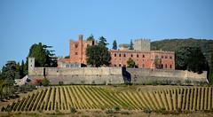 Castello di Brolio - 1 (antonella galardi) Tags: toscana siena 2018 autunno chianti gaiole castello brolio castle ricasoli vigna vino wine
