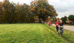 Haarlerbergloop 5 km (12)