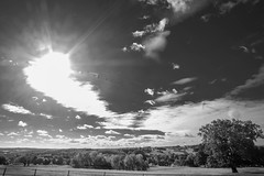Sunburst sky (Allan Rostron) Tags: yorkshiresculpturepark wakefield