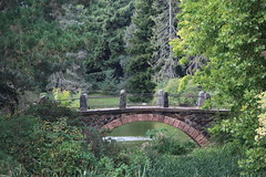 036A8081 (zet11) Tags: park germany berlin botanicalgarden pond trees plants bluesky woda woter water bridge