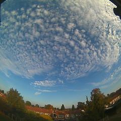 Bloomsky Enschede (October 16, 2018 at 05:01PM) (mybloomsky) Tags: bloomsky weather weer enschede netherlands the nederland weatherstation station camera live livecam cam webcam mybloomsky