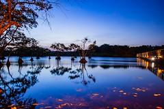 Fading into blue - Praia do Forte, Bahia, Brazil (ladgon) Tags: dusk bluehour twilight bahia praiadoforte lagoon lagoa canoneosrebelt6i