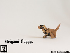 Origami Puppy - Barth Dunkan. (Magic Fingaz) Tags: anjing barthdunkan chien chó dog hond hund köpek origami paperfolding perro pies пас пес собака หมา 개 犬 狗