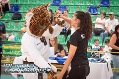 FESTIVAL DE TAEKWONDO 2018 BHAN SEOK-46