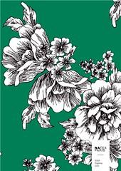 Sum-Paprika-C03 (natexfrance) Tags: sum été paprika fleurs trait grossefleur bicolore