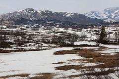 Rauland 1.7, Telemark, Norway (Knut-Arve Simonsen) Tags: rauland telemark norge норвегия norway noruega norwegen norvegia norvège नॉर्वे 挪威 ノルウェー நோர்வே νορβηγία sydnorge sørnorge østlandet norden scandinavia скандинавия