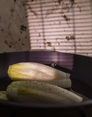Belgian endive (annick vanderschelden) Tags: belgium endive witlof witloof vegetable dutch whiteleaf chicory chicon head creamcoloured bitter leaf etiolation pale delicate flavour stuffed baked boiled cut cook slice raw inulin polysaccharide