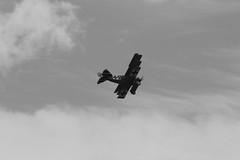 IMG_5202 BW edit (routemaster2217) Tags: clactononsea clactonairshow clactonairshow2018 airshow airdisplay aviation aircraft aeroplane bremontgreatwardisplayteam biplane triplane wwi worldwarone worldwar1 greatwar