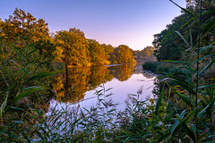Autumn mood on the old Elbe (Volker Bartz) Tags: river flus elbe wasser autumn herbst landscape bäume trees water nikon morning colours farben green grün d7500 mood