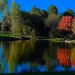 Pond In Fall thumbnail