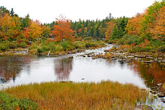 DSC03208 - Mill Pond (archer10 (Dennis) 196M Views) Tags: timberlea sony a6300 ilce6300 18200mm 1650mm mirrorless free freepicture archer10 dennis jarvis dennisgjarvis dennisjarvis iamcanadian novascotia canada autumn fall colours trees