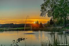 Sunset at the pond (GerWi) Tags: teich pond sunset sonnenuntergang natur himmel sky landschaft schollenreuth dorf wasser wolken clouds