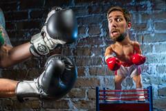 Unfair Advantage 284/365 (stevemolder) Tags: boxer strobist 30mm sigma canon westcott speedlite photoshop rocky boxing gloves brick little man