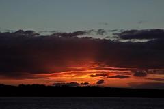 Good night sun (Troonafish) Tags: canon canon5d2 canon5dii canon5dmark2 canon5dmarkii 5d2 5dii 5dmark2 5dmarkii gavintroon gavtroon 2018 scotland scottish portknockie moray morayfirth morayshire moraycoast cullen cullenbay sunset sun sunsets sunsetoverwater sunsetoversea sunlight bestview orangesky orange red redsky redskyatnight scottishlandscape scottishscenery scottishcountryside scottishcoastline scenery sea seascape seascapephotography coast coastline coastal sky clouds cloud