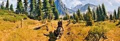 """""""The mountains are calling and I must go."""" (Xenolith3D) Tags: witcher3wildhunt thewitcher geralt geraltofrivia colorful gamescreenshot screenshot hd 4k pc nvidiaansel nvidia virtualphotography forest nature mist sky wood tree photomode gamephotography grass landscape kaermorhen art gameart digitalart mountain"""