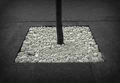 composition -18 (Rino Alessandrini) Tags: street backgrounds abstract flooring asphalt concepts concrete sidewalk ideas blackcolor shape cobblestone gray road pattern nopeople white stonematerial cement minimal