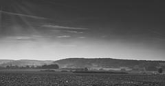 Autumn walk (PHOTOGRAPHY Toporowski) Tags: schwarz contrast landschaft schwarzweis bw sonne landscape schatten sw light blackwhite licht wolken kontrast sun weite autumn herbst shadow himmel eschweiler nrwnordrheinwestfalen deutschland deu