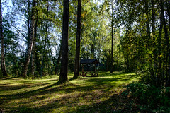03092018-DSCF1028-2 (Ringela) Tags: leksands rastplats september 2018 sweden river nature tree fujifilm xt1