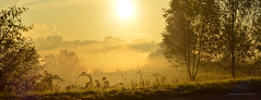 Foggy sunrise 2018 (ChemiQ81) Tags: polska poland polen polish polsko jesień autumn golden złota widok view landscape krajobraz pejzaż podzim høsten otoño jesen efterår aŭtuno sügis syksy automne φθινόπωρο סתיו herfst fhómhair ruduo rudens herbst осень outono toamnă jeseň јесен höst sonbahar осінь őszi autunno panorama panoramic wojkowice chemiq nikon nikkor zagłębie zaglebie dabrowskie dąbrowskie lengyel lengyelország басейн домбровський бассейн домбровский 2018 fog foggy sun sunrise wschód colorful orange słońca