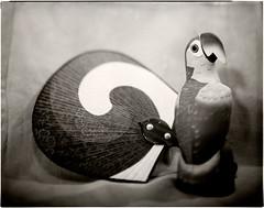 Art Deco (Valentine Kleyner) Tags: stilllife film 4x5 fomapan lf wista wollensak d76 stand