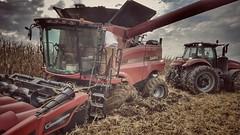 a sticky situation... (BillsExplorations) Tags: harvest mud stuck rain field st giveusabreak illinois omg case farmmachinery farming iwouldratherbeanywhereelserightnow help corn