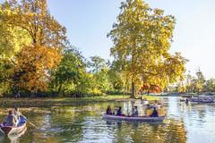 Promenade sur le lac (Xtian du Gard) Tags: xtiandugard joëllemillet peinture oilpainting impressionnistes impression effet automne