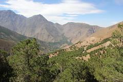 IMG_3963 (stevesquireslive) Tags: morocco atlas mountains