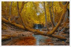 Nant Mill Waterfall (philip_shackleton) Tags: falls river landscape waterfall nantmill mill nant